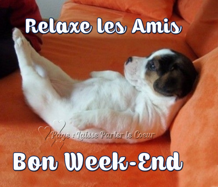bon-week-end_119.jpg.372089cb6a647582718275eb509ffc30.jpg