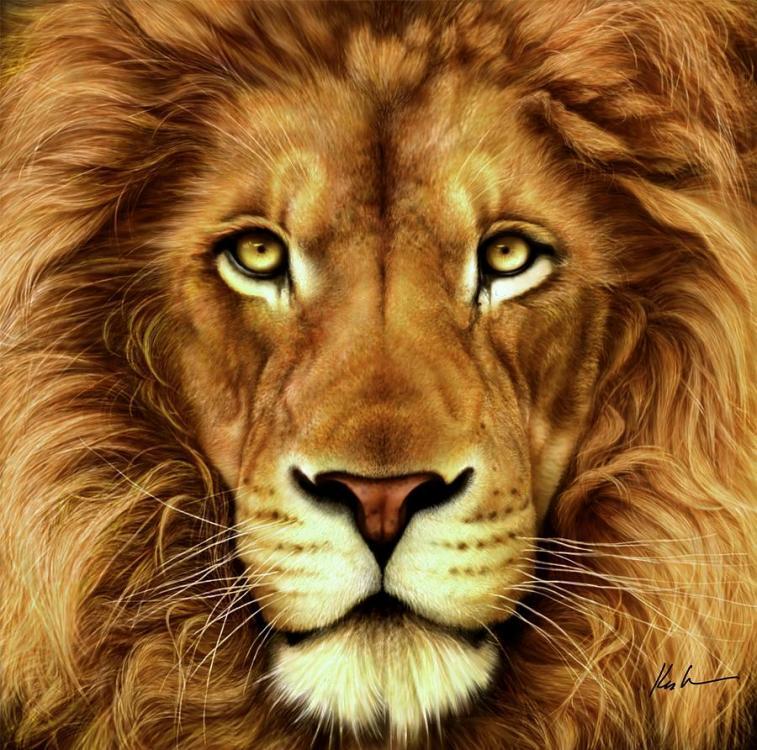 lion-karen-kutoloski.jpg