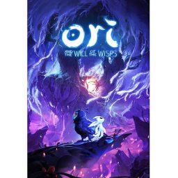 Ori and the Will of the Wisps jaquette