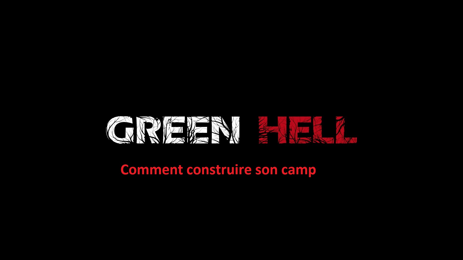 une guid e green hell